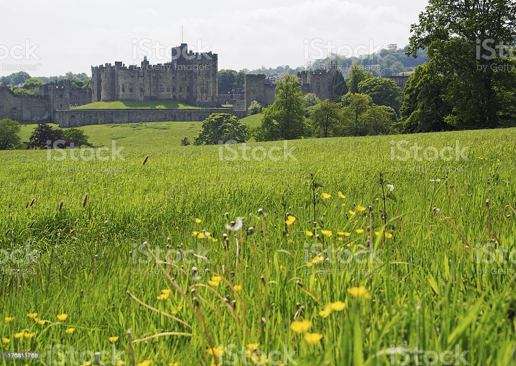 Alnwick Castle and Spring Meadow stock photo