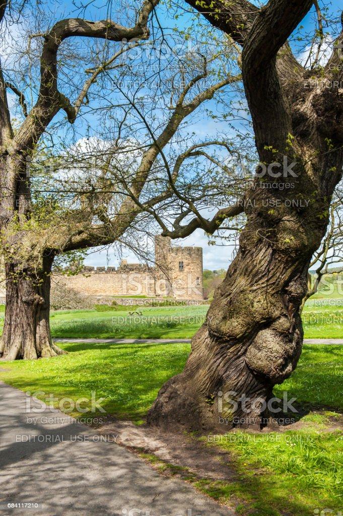 Alnwick Castle in Northumberland, UK stock photo