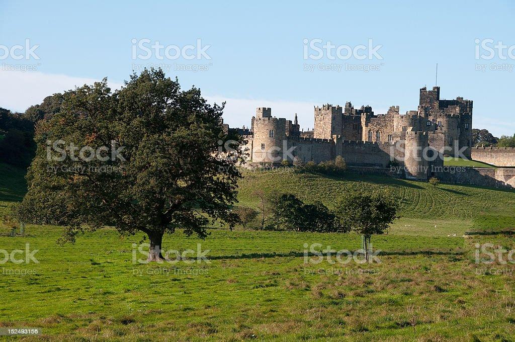 Alnwick Castle with tree stock photo