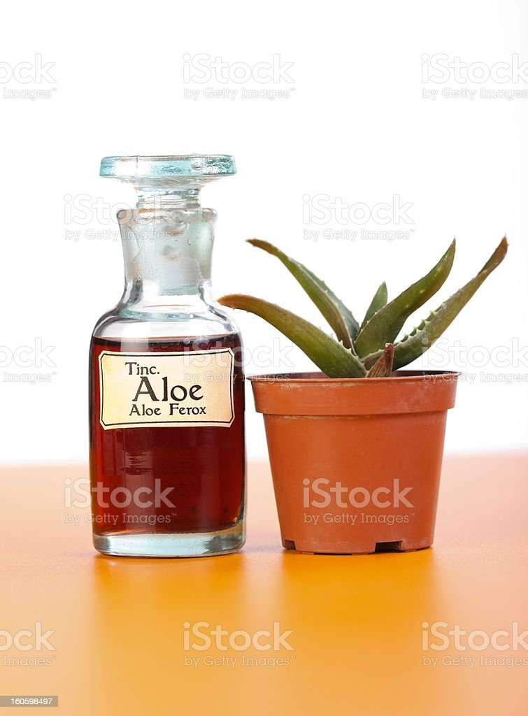 Aloe Ferrox plant and extract in bottle stock photo