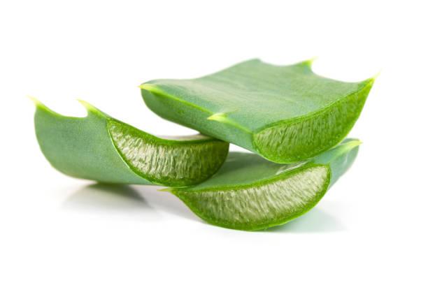 Aloe macro stock photo
