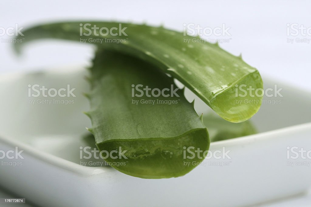 Aloe auf Teller royalty-free stock photo