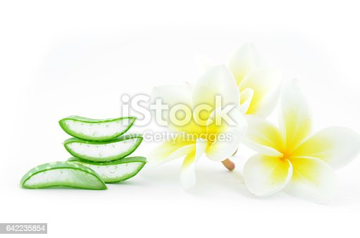 istock Aloe vera and plumeria. 642235854