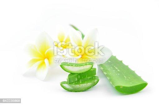istock Aloe vera and plumeria. 642235868