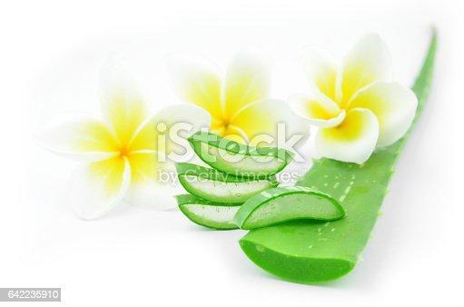 istock Aloe vera and plumeria. 642235910