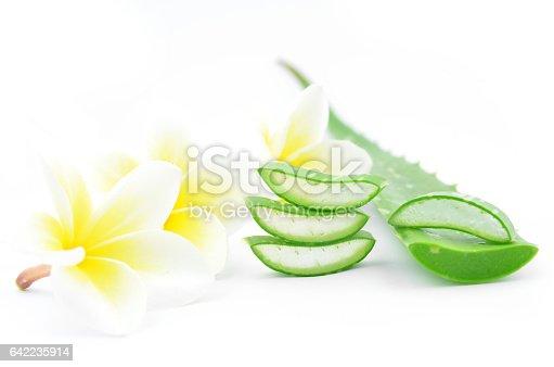 istock Aloe vera and plumeria. 642235914