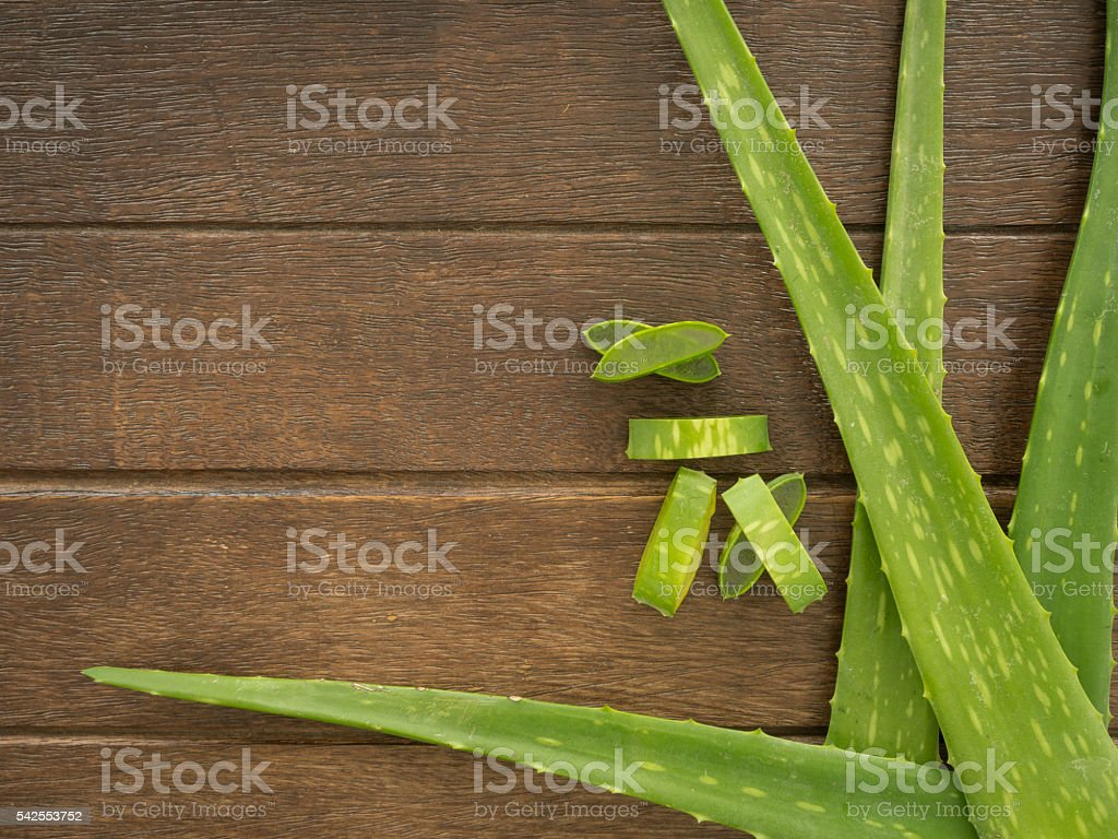 aloe vera background stock photo