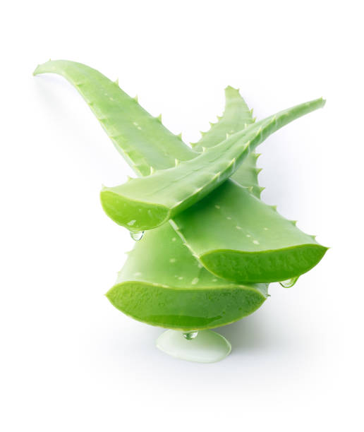Aloe Vera dripping on white background - clipping path included Aloe Vera dripping on white background - clipping path included aloe stock pictures, royalty-free photos & images