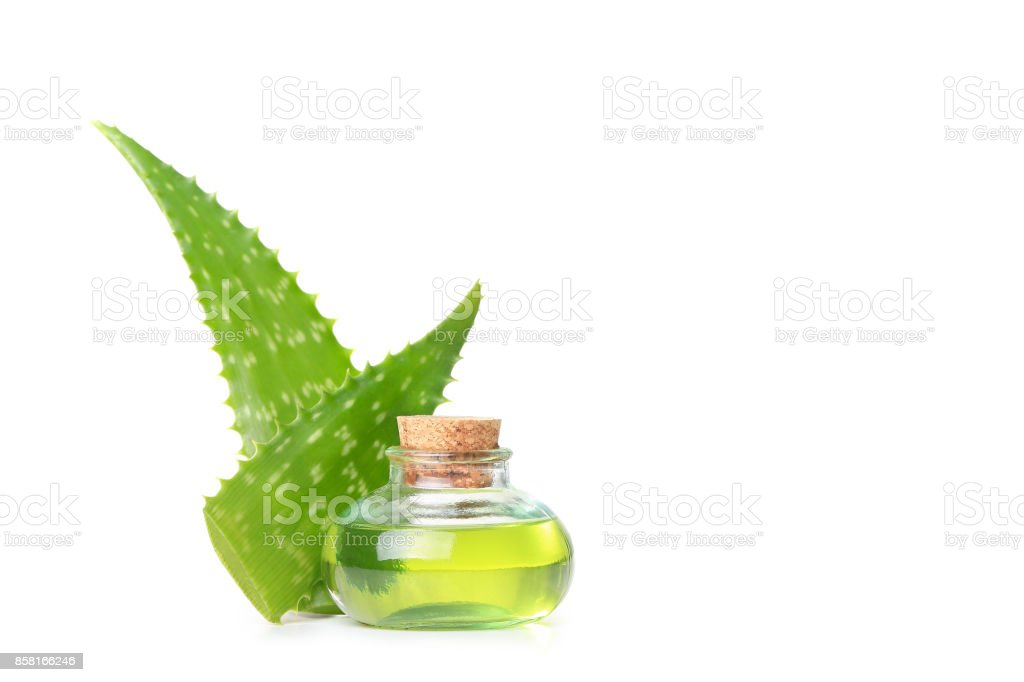 Aloe vera essential oil stock photo