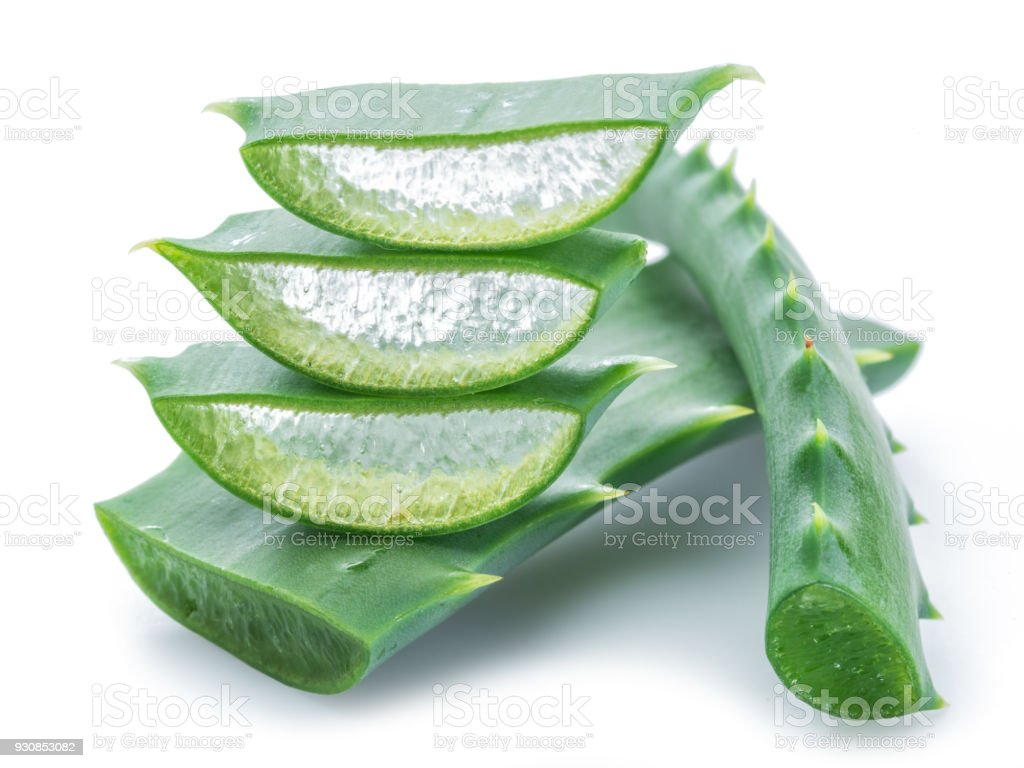 Aloe vera tranches fraîches sur fond blanc. Macro. - Photo