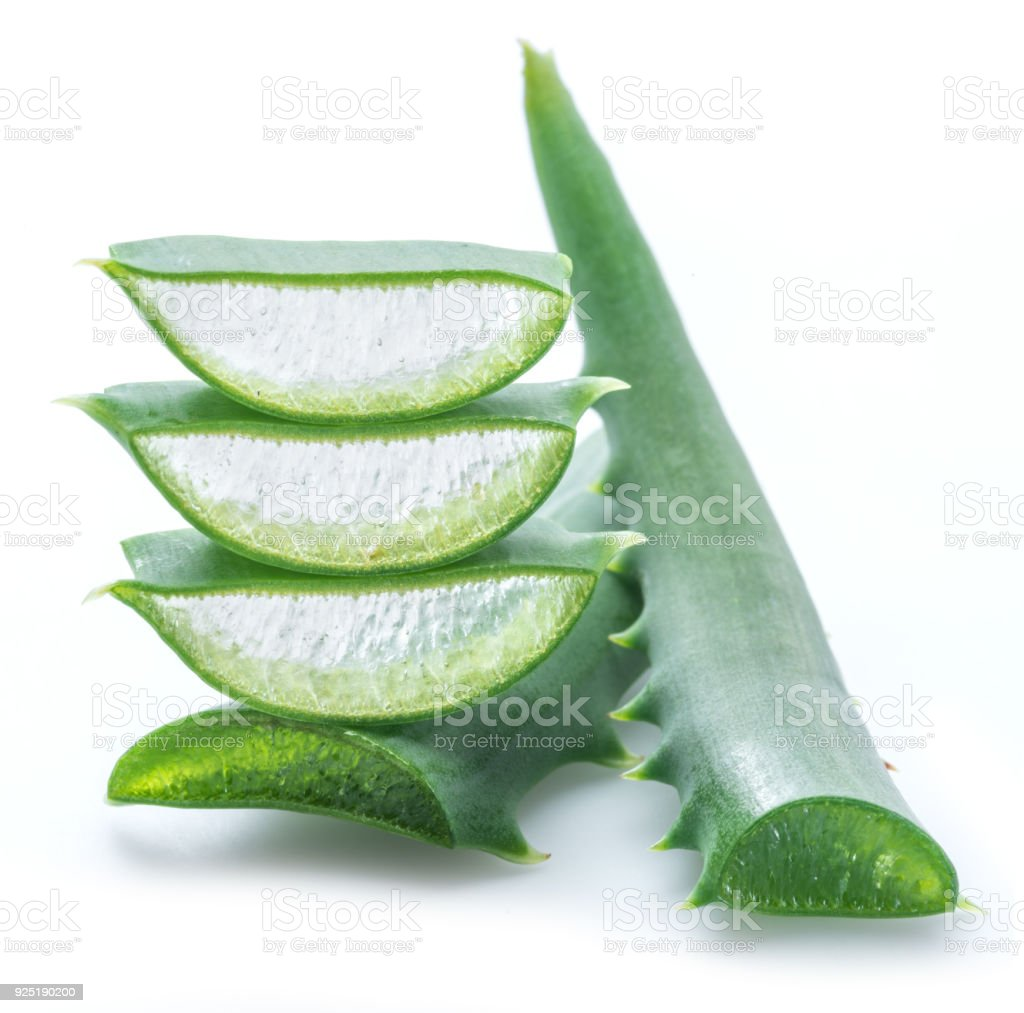 Aloe vera fresh slices. stock photo