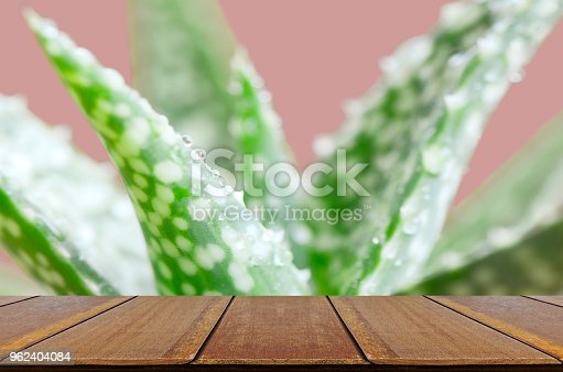 istock Aloe Vera leaves with water drops on pink background and Wood Table. 962404084