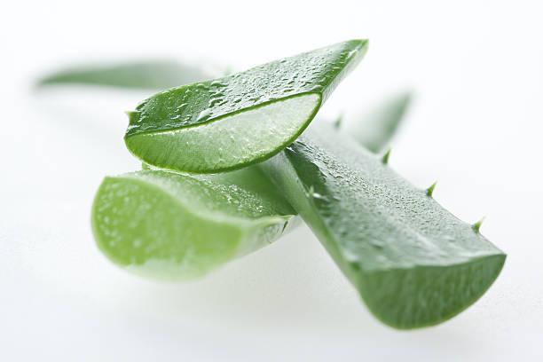 Aloe vera macro stock photo