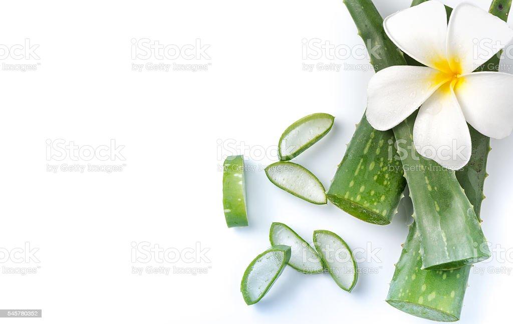 Aloe Vera sliced isolated - foto de stock