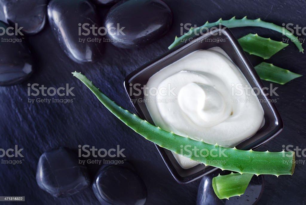 Aloe Vera with Lotion Box stock photo