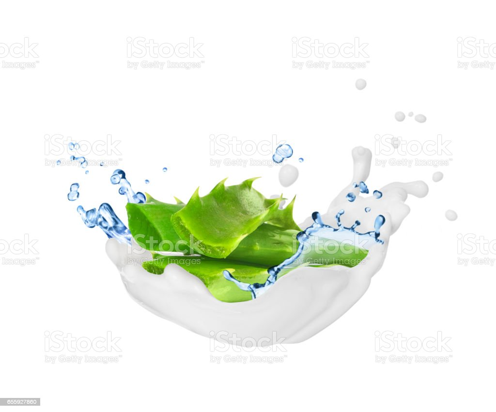 Aloe vera with splashes of cream and water, isolated on white background stock photo