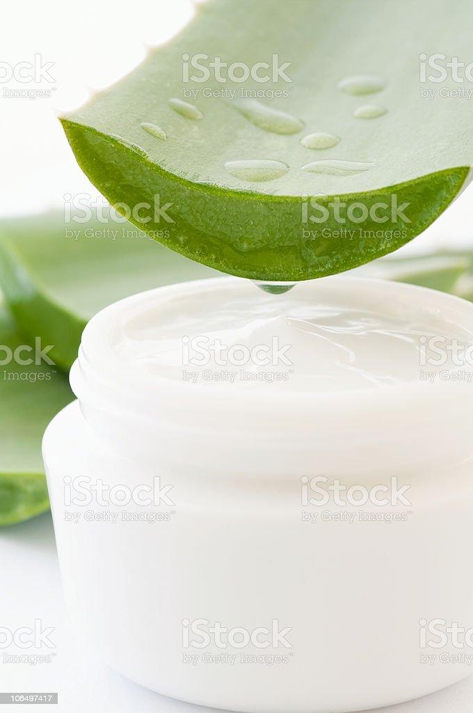 Aloe with Creme stock photo