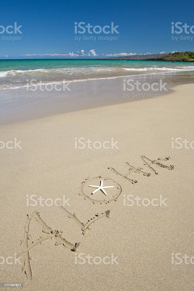 Aloha and starfish on the white sand tropical beach stock photo