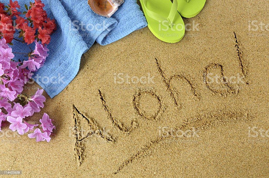 アロハビーチの風景 ストックフォト