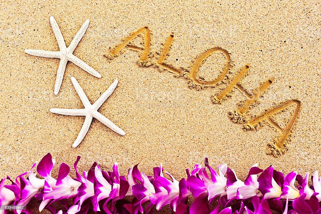 アロハビーチからハワイの挨拶 ストックフォト