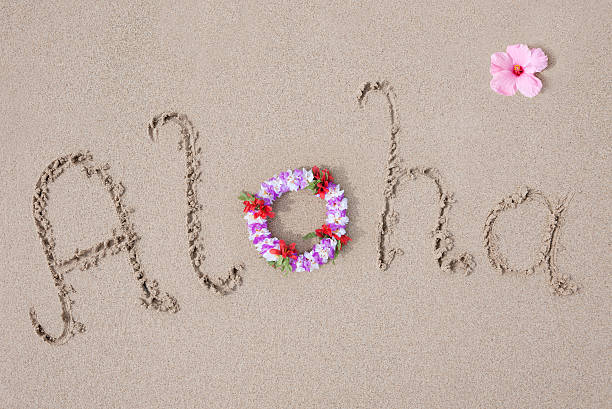 Aloha (XXXL) stock photo