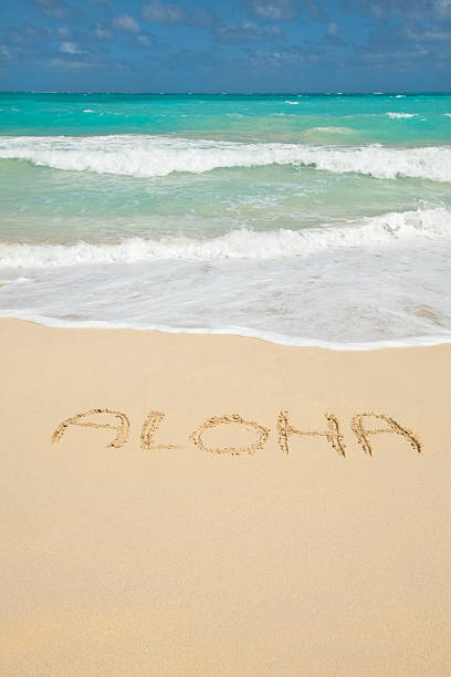 Aloha-Welcome to Hawaii! stock photo