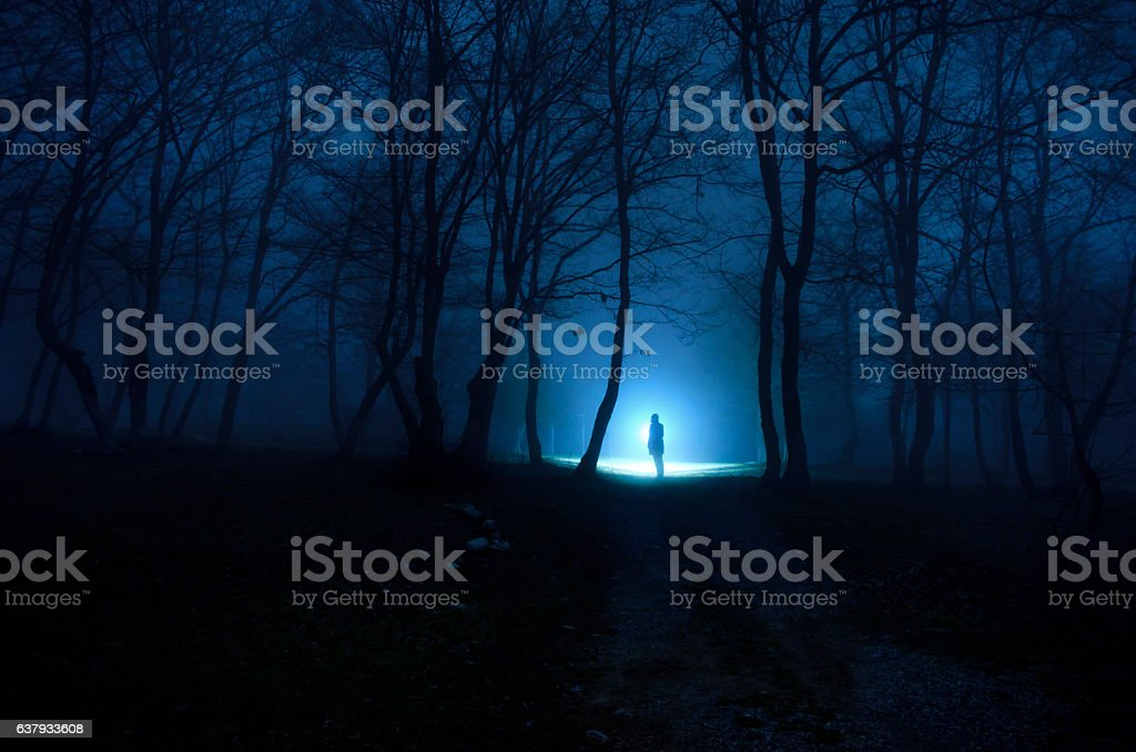 Alone girl in the forest at night stock photo