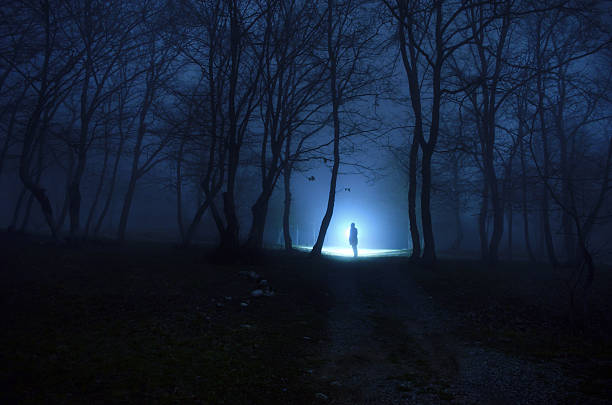 alone girl in the forest at night - vampire femme photos et images de collection