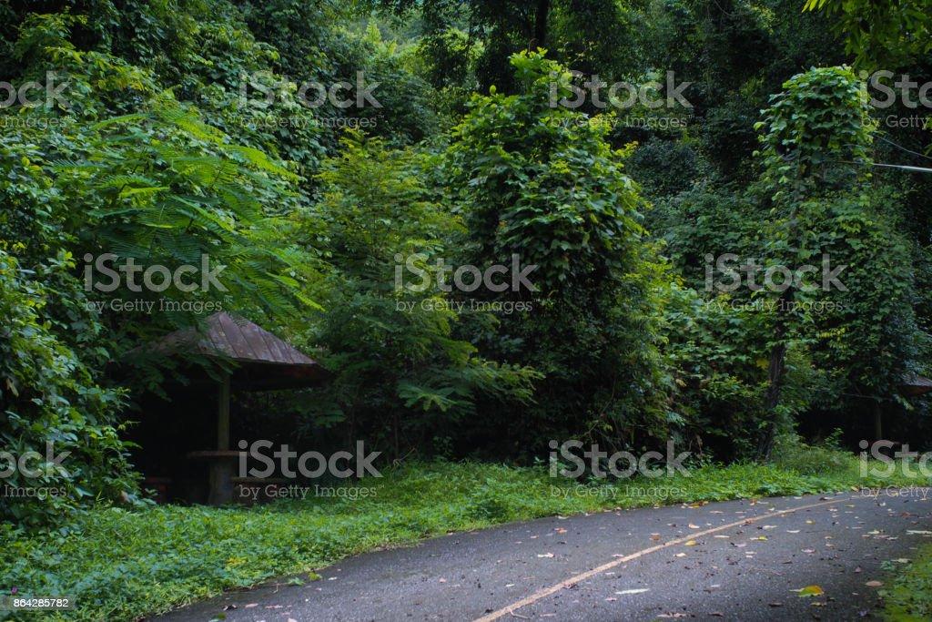 Alone hut beside road royalty-free stock photo