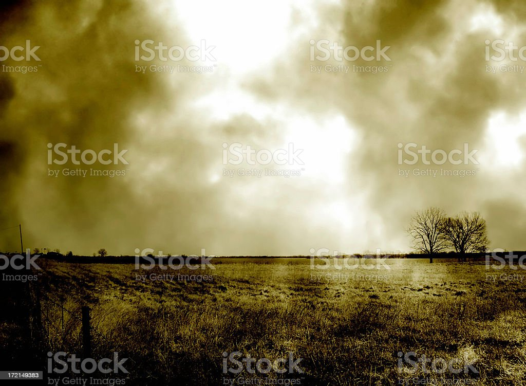Alone II - Duotone Rural Field and Tree royalty-free stock photo