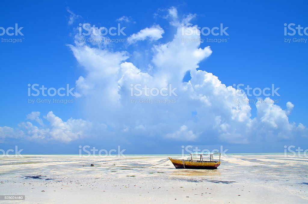 Alone in paradise stock photo