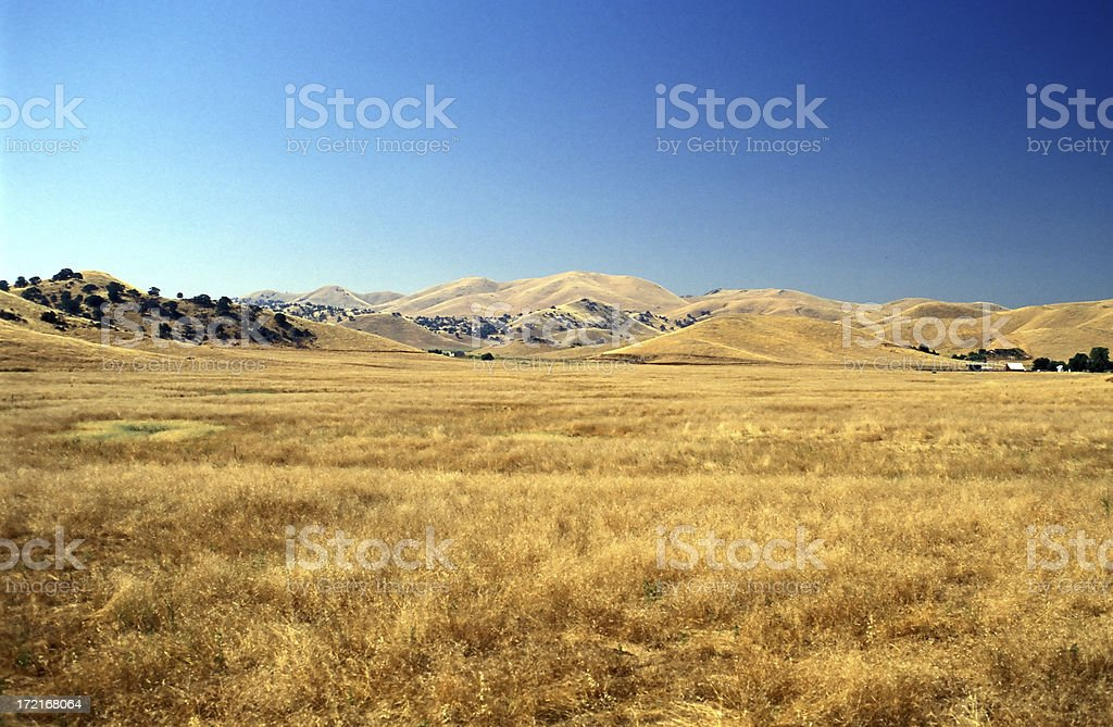 Alone in the Prairie stock photo