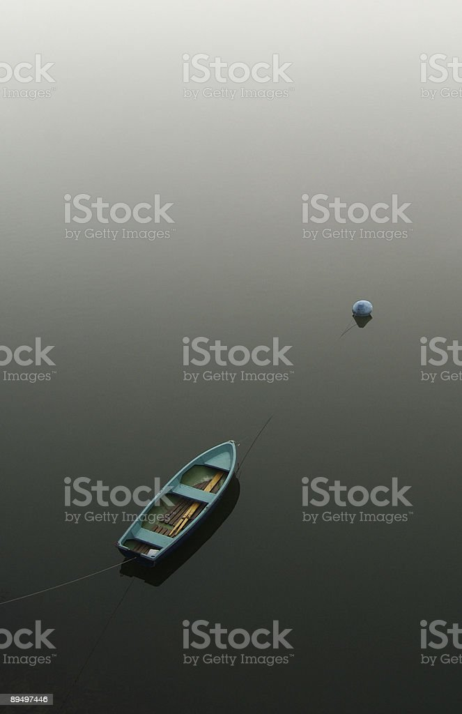 Alone in the sea royalty free stockfoto