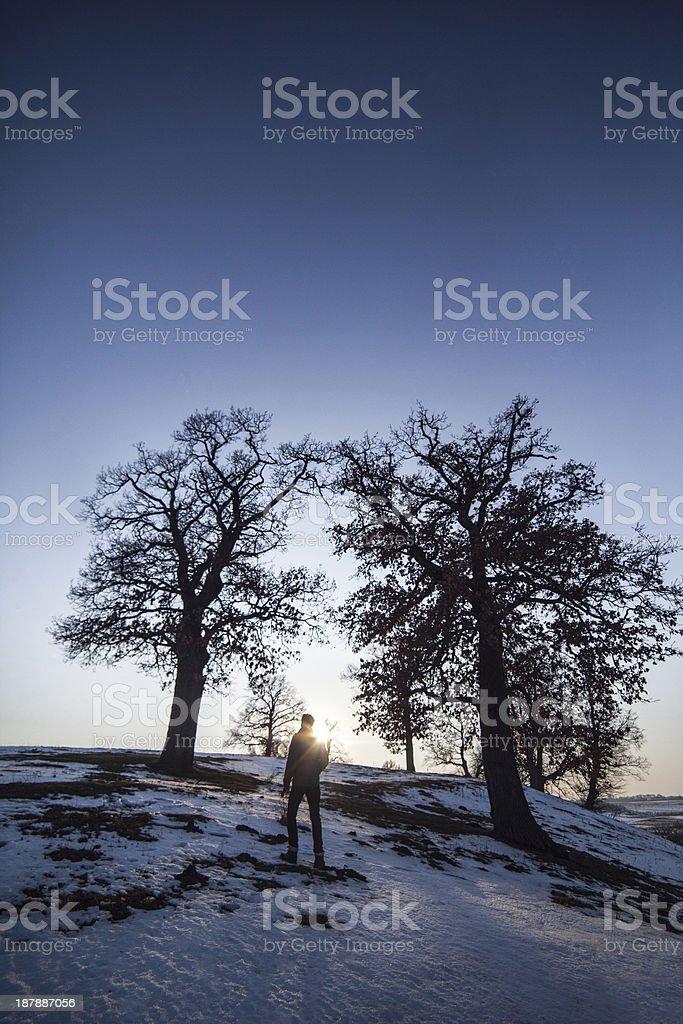 Alone man under big trees royalty-free stock photo