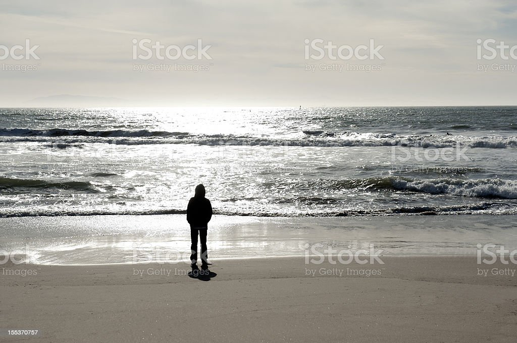 Alone on a Beach royalty-free stock photo