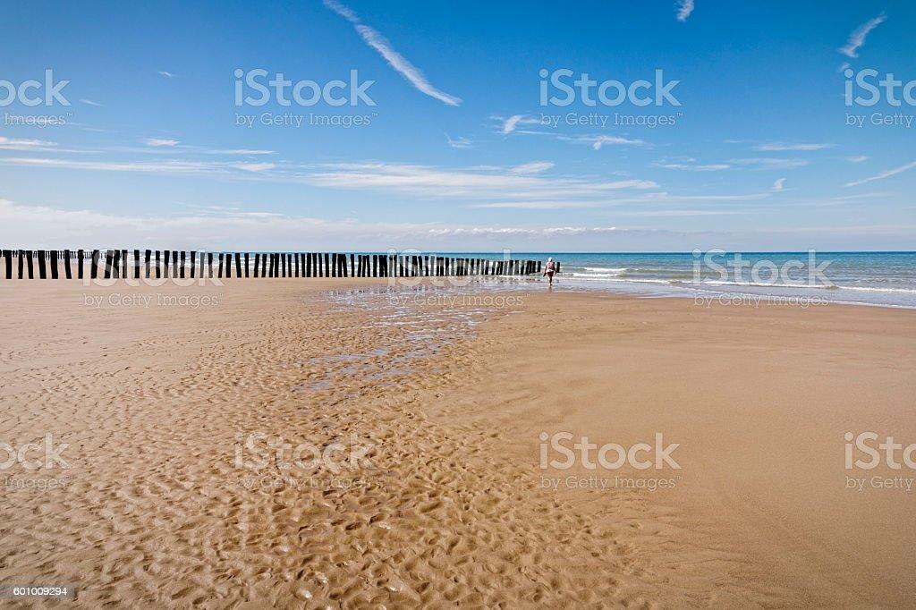 Alone on a beach stock photo