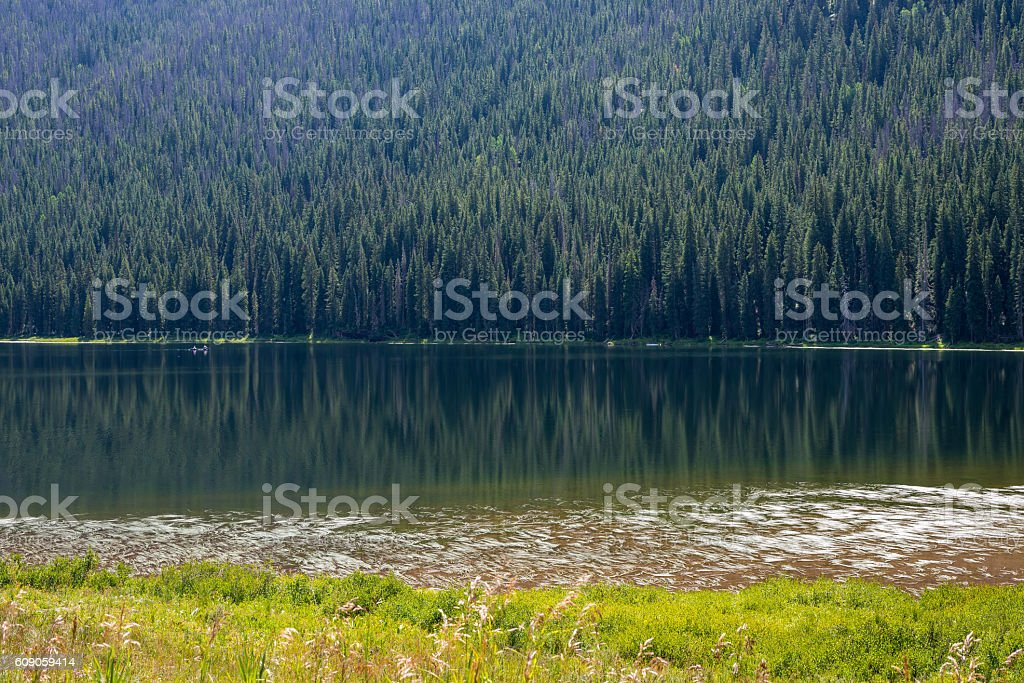 Alone on the lake stock photo