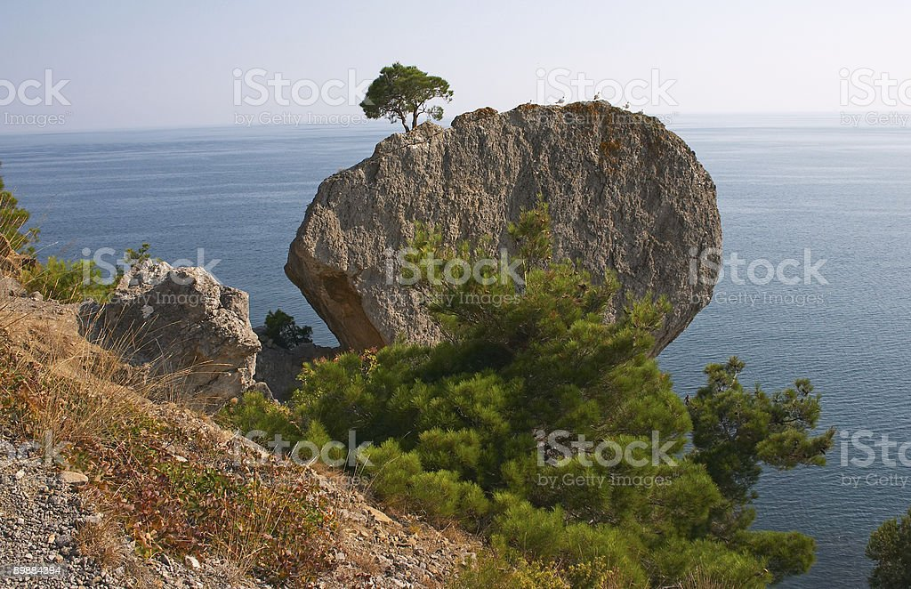 Alone on the rock royalty-free stock photo