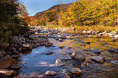 Rocks stand tall in the Swift River while bright, autumn foliage colors the shoreline under a blue sky along the Kancamagus Highway, New Hampshire