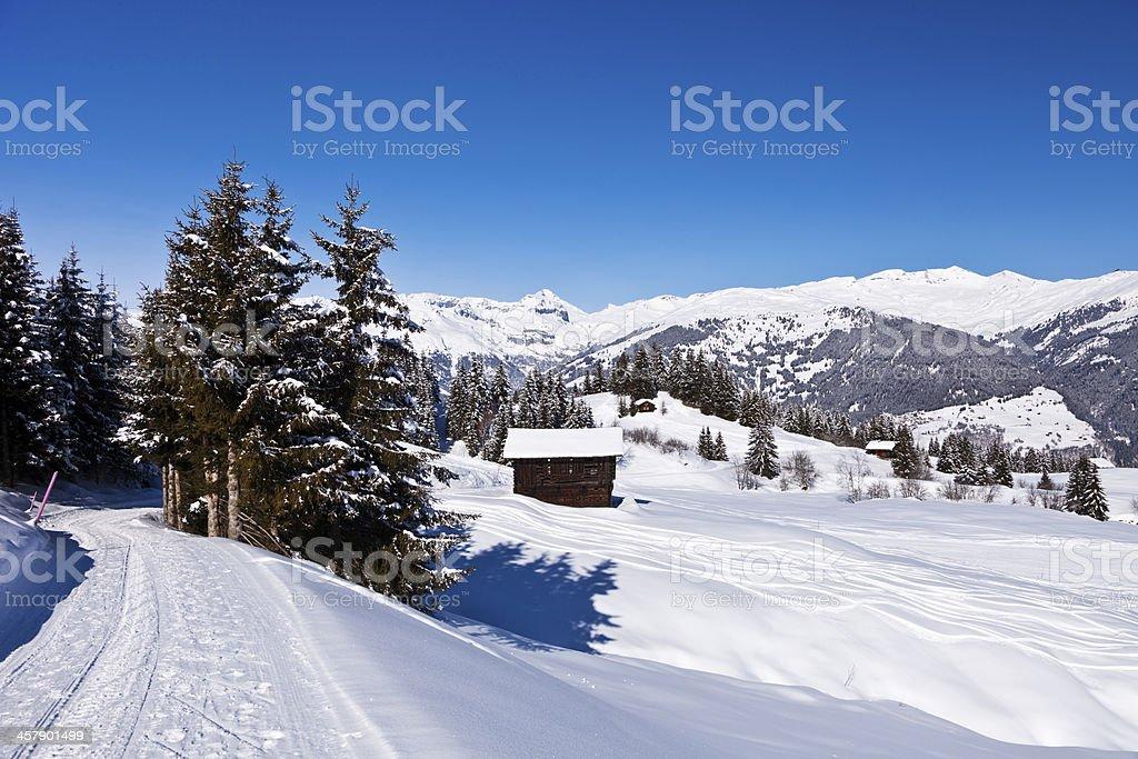Alp near Obersaxen in Winter stock photo