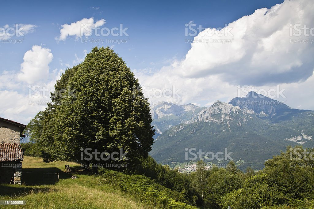 Alp Panorama with white clouds stock photo