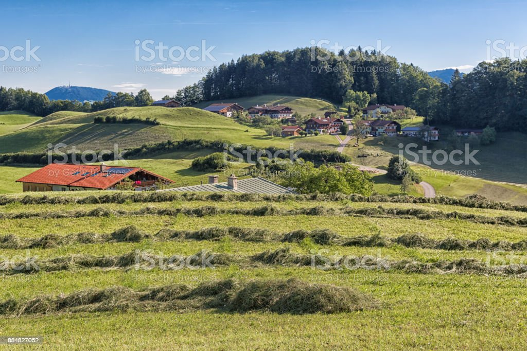 Alp with drying hay in German mountains near Berchtesgaden stock photo