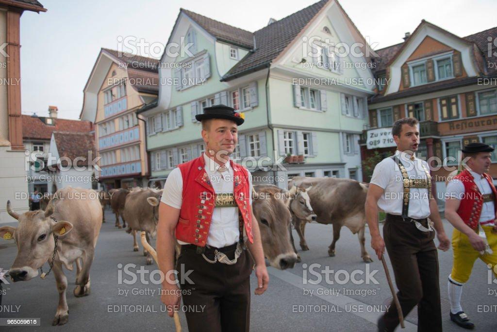 Alpaufzug royalty-free stock photo