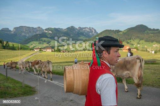 Alpaufzug - Stockowe zdjęcia i więcej obrazów Alpy