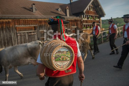 Alpaufzug Stock Photo & More Pictures of Agriculture
