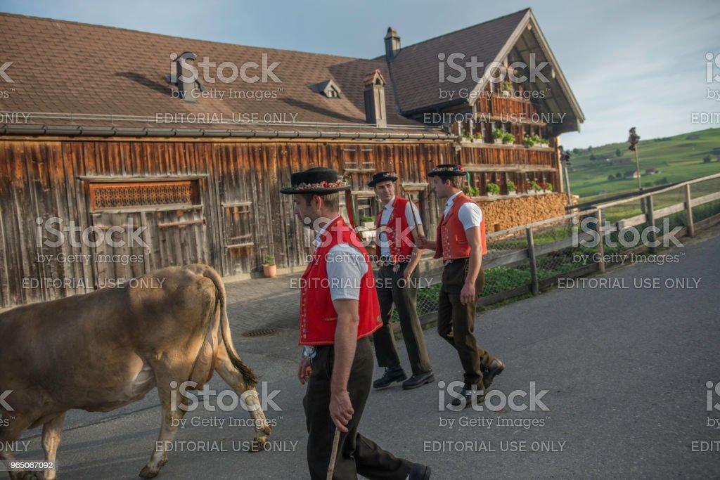 Alpaufzug – Foto