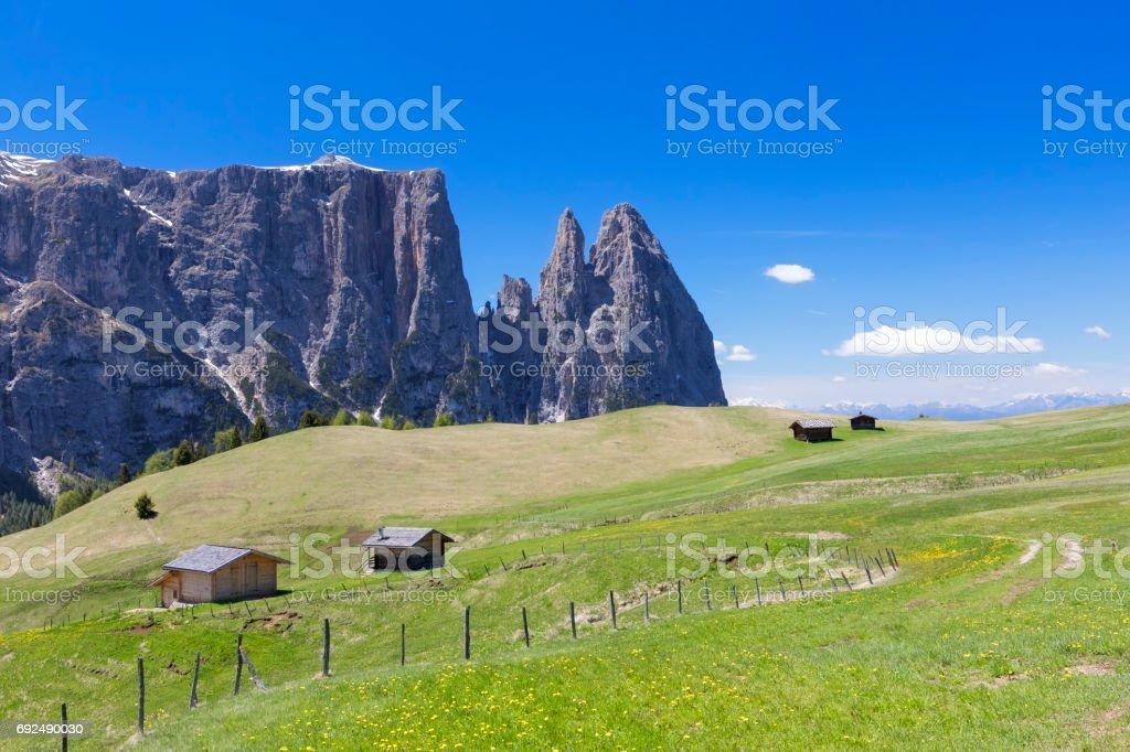 Alpe di Siusi at Springtime - Mount Schlern in background stock photo