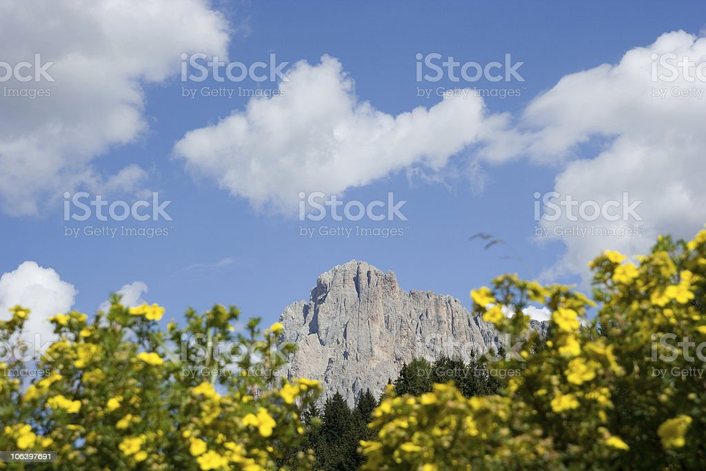 Alpe di Siusi - Dolomiti, Italian Alps stock photo