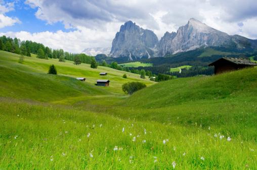 istock Alpe di Siusi, Dolomites, South Tyrol, Italy 122258785