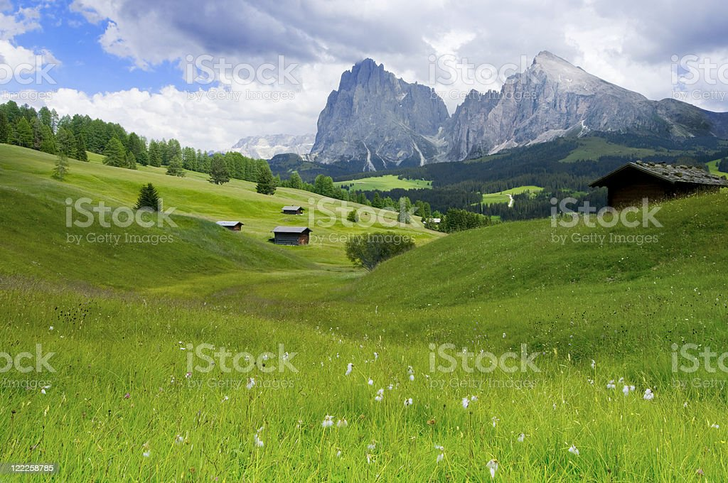 Alpe di Siusi, Dolomites, South Tyrol, Italy stock photo